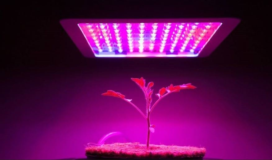 ace accessories in starter hardware lighting light hydrofarm x lights product grow jsp index h w hydroponic growing plant