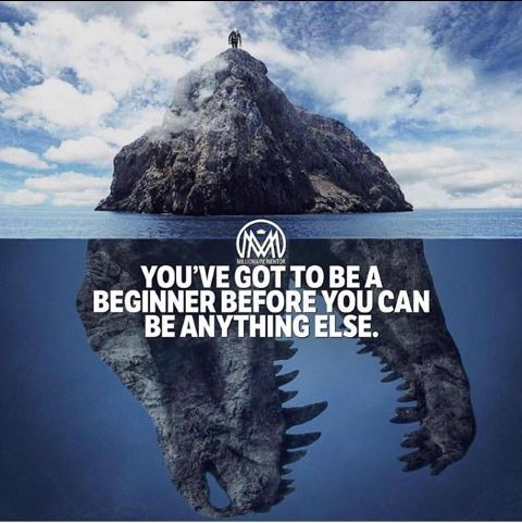 You Will Got to be a Beginner Before You Can be Anything Else