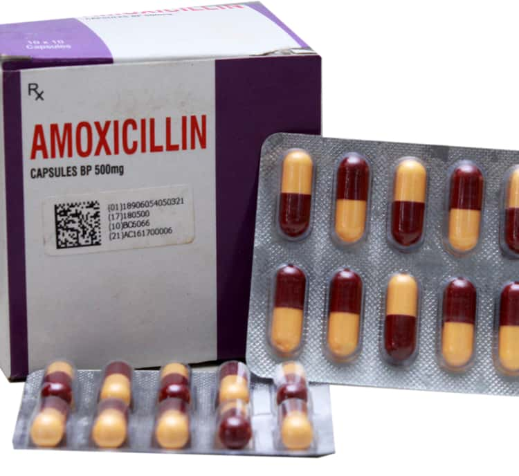 amoxicillin_instruction