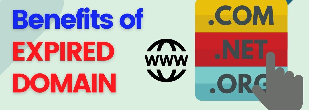 Best Places To Buy a Website in an Expired Domain Name Auction